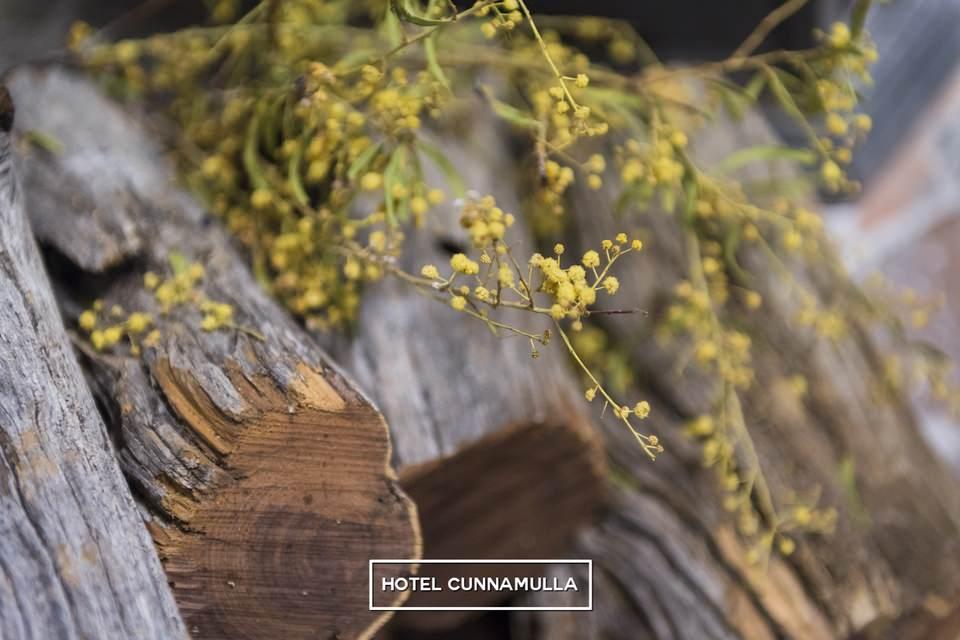 hotel-cunnamulla-pub-7635