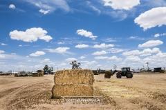 burrumbuttock-hay-run-cunnamulla-7941