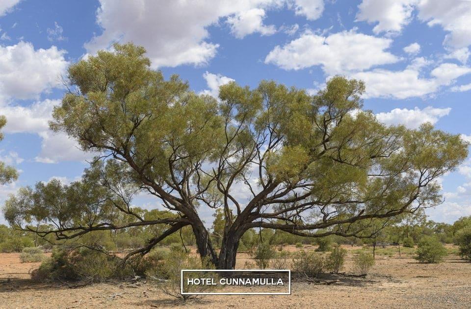 Hotel Cunnamulla Outback Pub Tourist