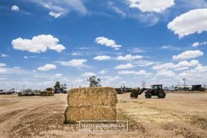 Guest Reviews Accommodation Cunnamulla